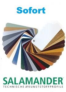 Salamander-farbdekoren sofort